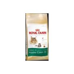 Royal Canin Main Coon 31...