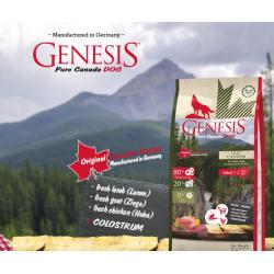 Genesis pure Canada Dog...
