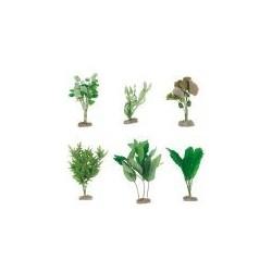 Aquarienpflanzen Seide für...